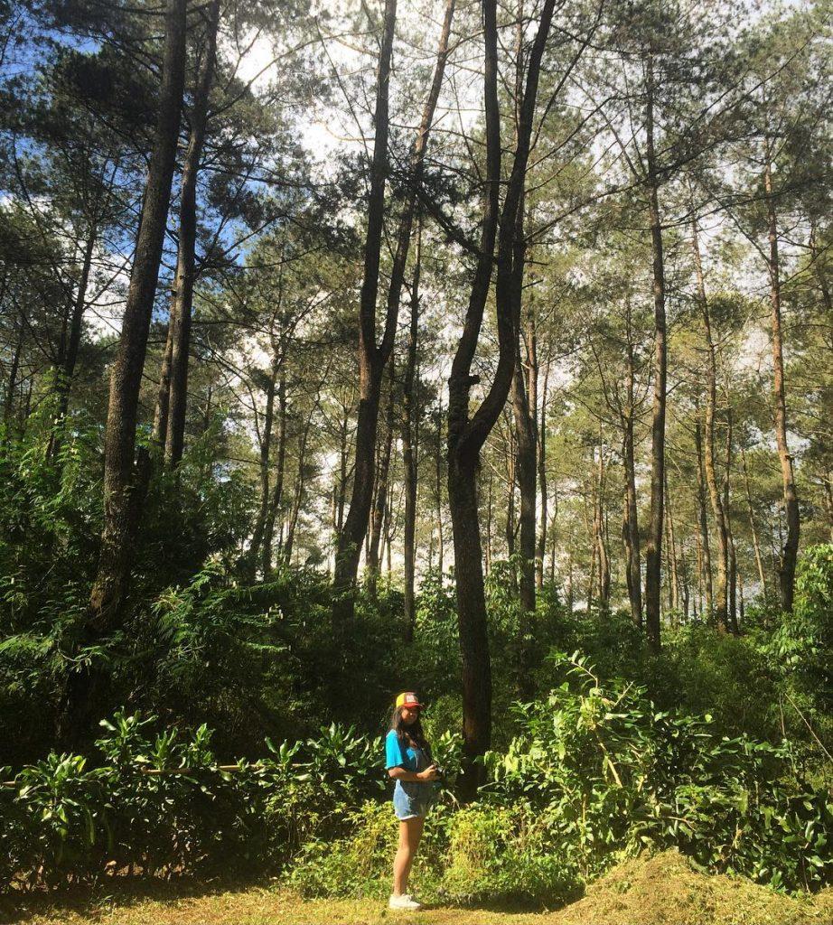 wisata alam lembang taman hutan jaya giri