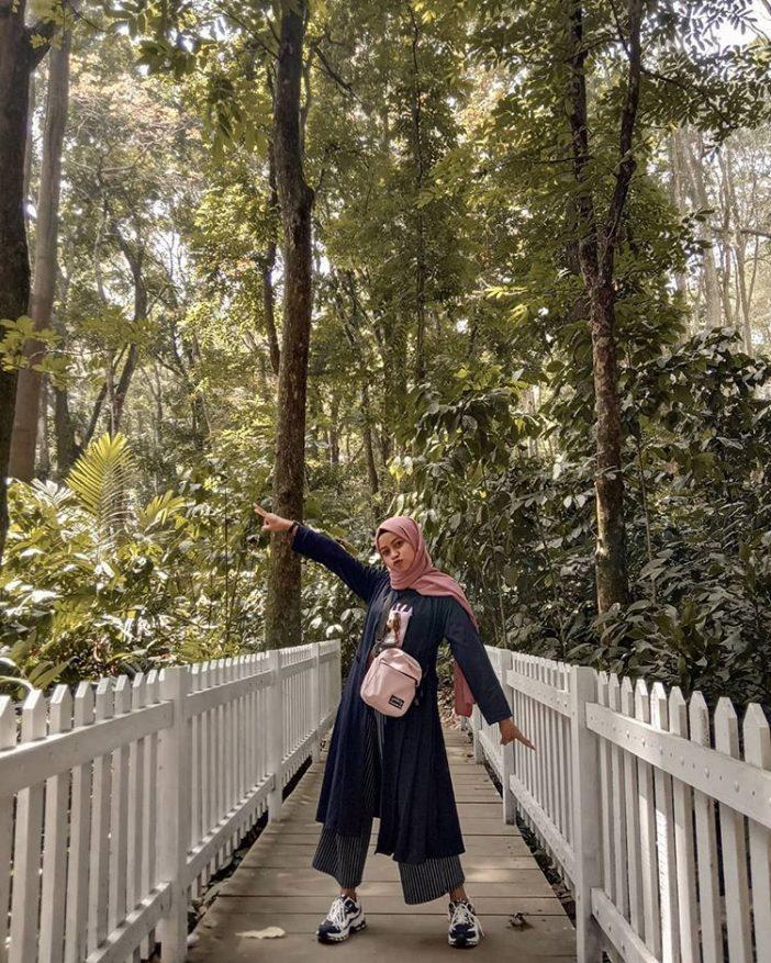 tempat wisata di bandung taman hutan raya juanda