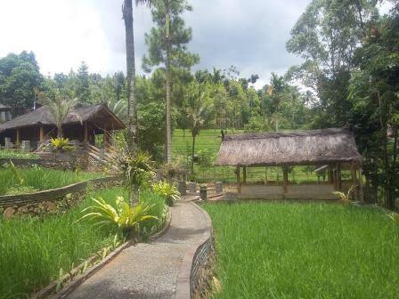 tempat wisata bandung villa alam sentosa